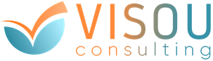 VISOU Consulting